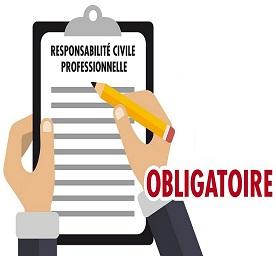 La responsabilité civile professionnelle -  RC PRO
